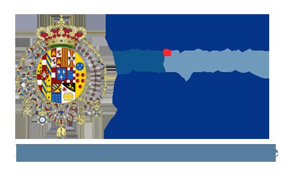 IL NUOVO SUD Logo